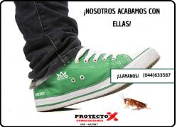 Fumigaciones Proyecto X